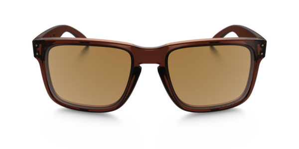9102-03 polarized brown front