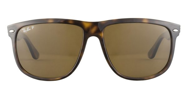 rb4147 71057 polarized tortoise front